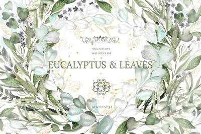 Watercolor EUCALYPTUS & LEAVES