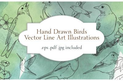 Vector Birds Line Art Illustration