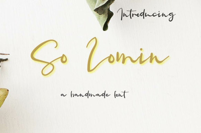 So Lomin - valentine font by watercolor floral designs