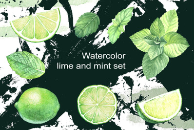 Watercolor lime and mint. Spice