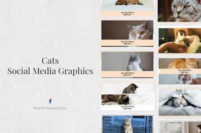 Cats Facebook Posts