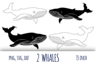 Whale svg. Humpback whale clipart