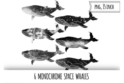 Monochrome space whales clipart. Galaxy whale