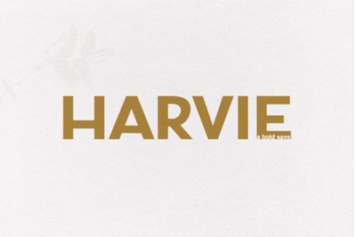 Harvie - A Bold Sans Font