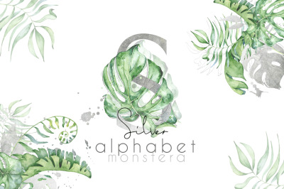 Silver Monstera - tropical leaves alphabet