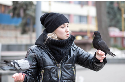 Pigeons eat sunflower seeds from the hands of a young girl
