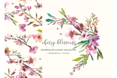 Watercolor Pink Cherry Blossoms - Spring Blooms Florals Clipart