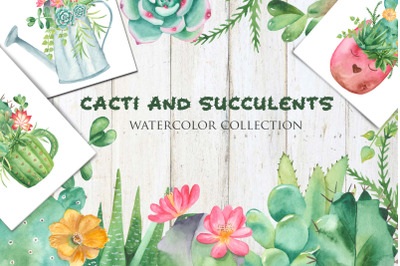 Succulents and cacti. Watercolor collection.