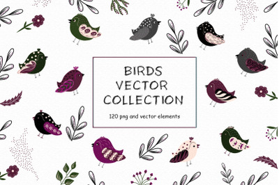 Birds vector collection Spring clipart