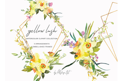 Hand Painted Watercolor Daffodil Bouquets and Frames