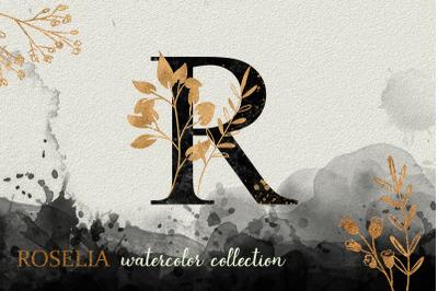 Black Roselia Watercolor Collection