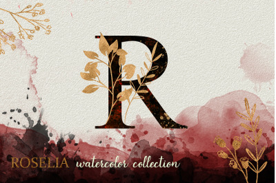 Red Roselia Watercolor Collection