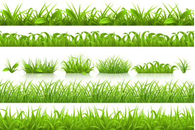 Spring grass, vector set and pattern. Nature in the summer. Garden