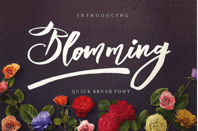 Blomming - Brush Font