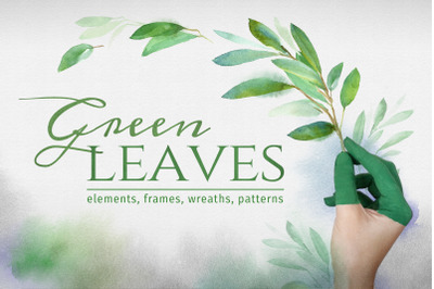 Green leaves. Graphic Set
