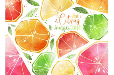 Watercolor Citrus Slices Clipart