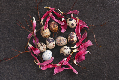 Easter composition with quail eggs and pink petals