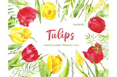 watercolor red yellow tulips
