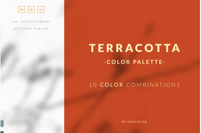 Terracotta Color Palette collection