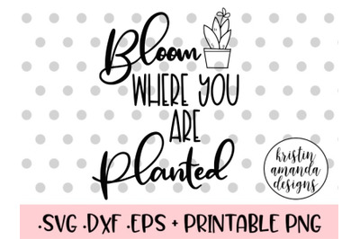 Bloom Where You Are Planted SVG DXF EPS PNG Cut File  Cricut