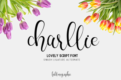 Charllie Lovely Script Font