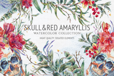 Watercolor skull and red amaryllis