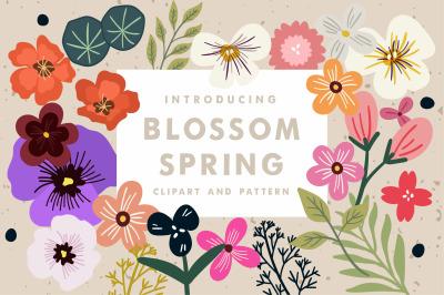 Blossom Spring Tool Kit