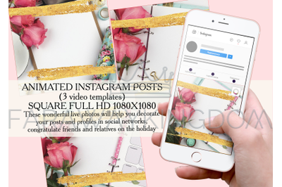 ROSE Golden Flower Internet Instagram Animated Template Set