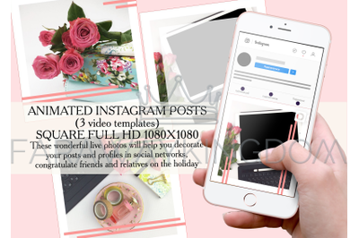 ROSES FOR YOU Flower Internet Instagram Animated Template Set
