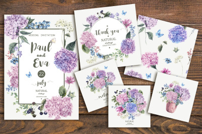 Vector Blooming Hydrangia Cards