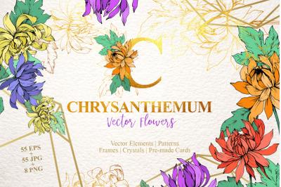 Chrysanthemum Vector Flowers