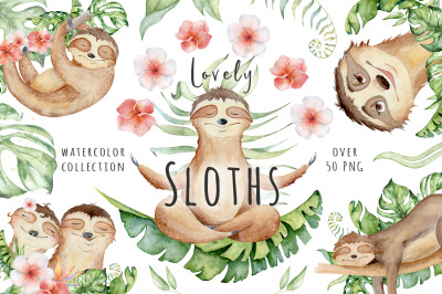 Lovely Sloths Watercolor set