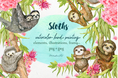 Sloth. Watercolor Clipart.