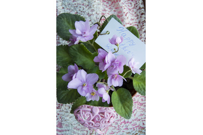 Vertical shot-card for mother's Day with an inscription in a flower po