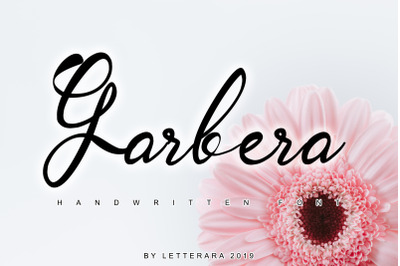 Garbera