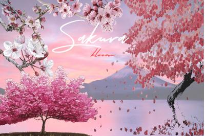 Sakura bloom. Flowers, branches, trees vector illustrations