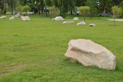 Landscaping in the garden, white stones lie on the green lawn