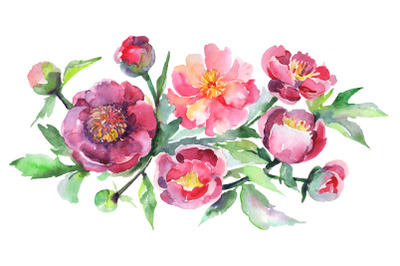 Bouquet with pink peonies Watercolor png