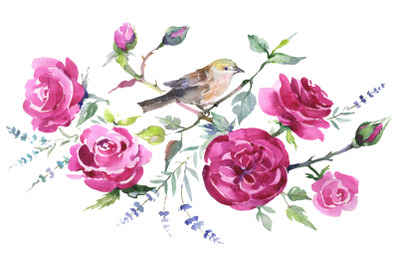 Bouquet with roses and a bird Watercolor png