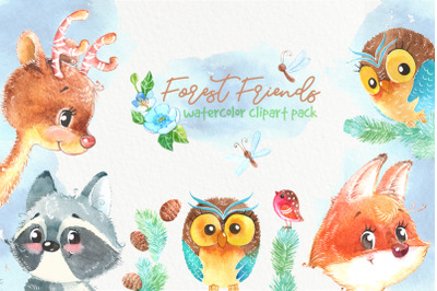 Woodland forest watercolor animals clipart pack. Owl, deer, fox, racoo