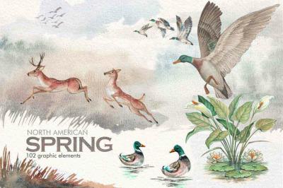 Watercolor North American Spring