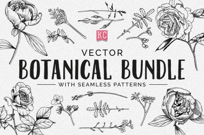 Vector Botanical Illustrations