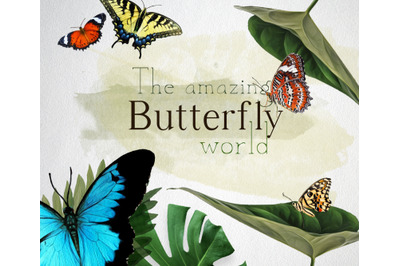 The amazing butterfly world. 5 different butterflies in oil paint/wat