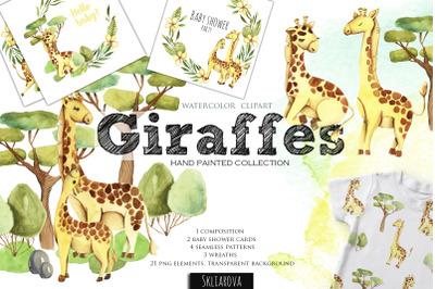 Giraffes. Watercolor clipart.