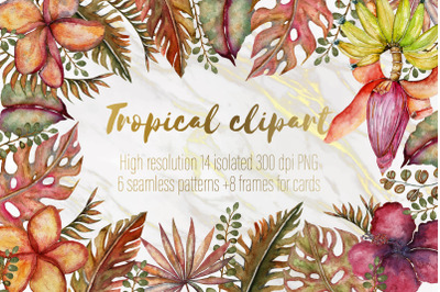 Tropical Clipart Set BIG SALE!