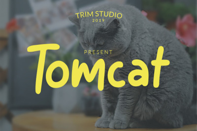 Tomcat - Cheerfull Day Font