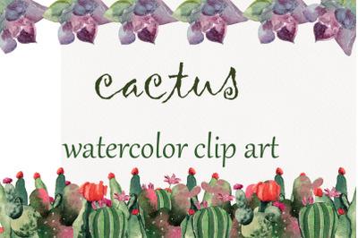 Cactus, watercolor clip art