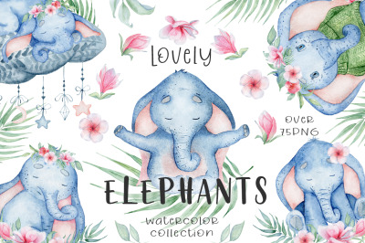 Lovely Elephants Watercolor set