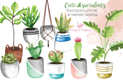 Potted Plants 18 watercolor illustrations