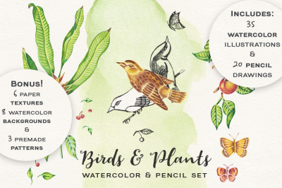 Birds & Plants Watercolor and Pencil Set